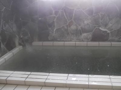 黒鴨温泉 滝の湯旅館